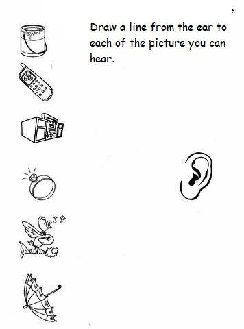 5 senses worksheet for kids (5) | Crafts and Worksheets for Preschool,Toddler and Kindergarten