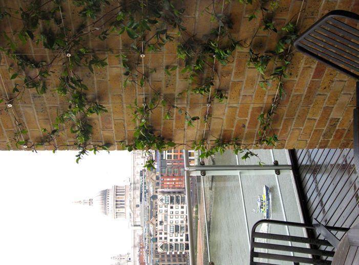 Green Wall Stainless Steel Wire Trellis Kit Wire