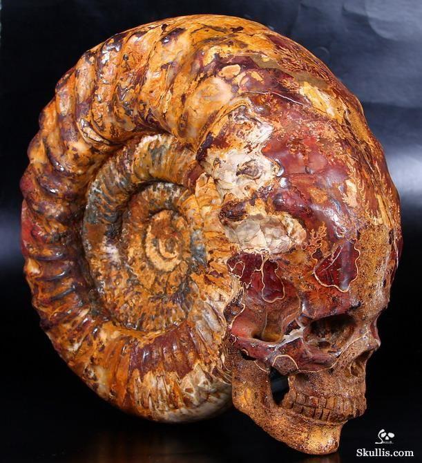 Достаточно крупная резная скульптура из аммонита - сочетание панциря ископаемого моллюска и вырезанного из него антропоморфного черепа. Завораживающе красиво.