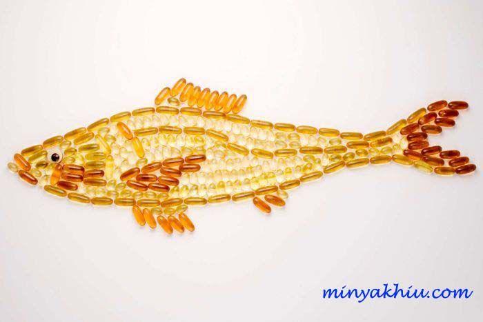 minyak ikan dan kolesterol