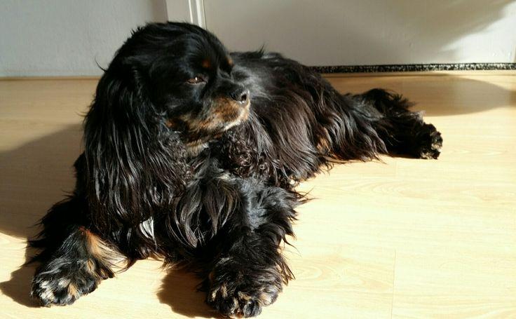 Babyboy Floris in de zon