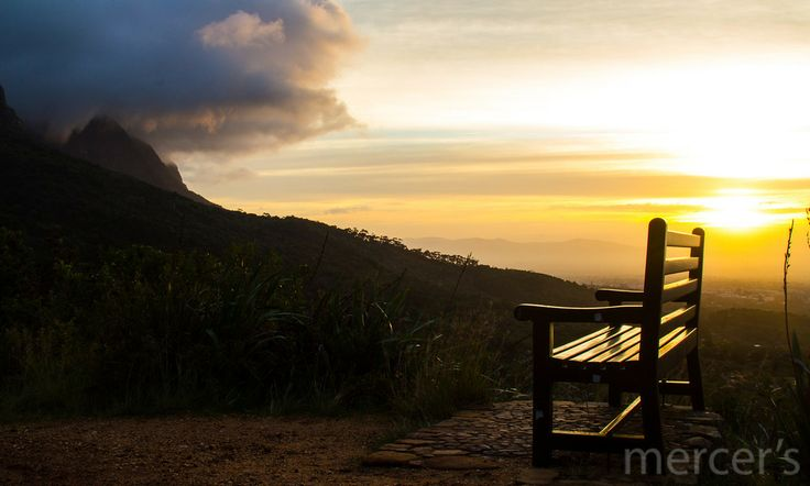 The bench for a mountain view