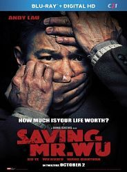 Saving Mr Wu 2015 720p BluRay x264-ROVERS