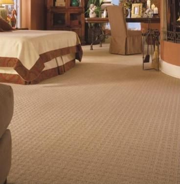 Patterned Neutral Berber Carpet For Bedrooms And Family Room