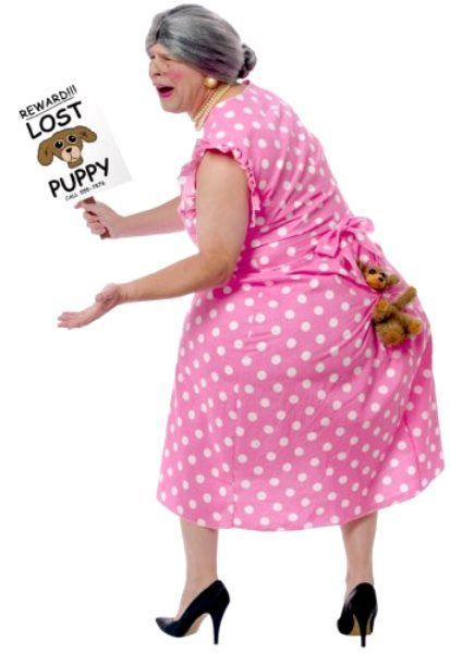 Lost Puppy Halloween Costumes Funny Halloween Costumes
