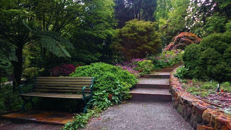 George Tindale Gardens Sherbrooke, Dandenong Ranges