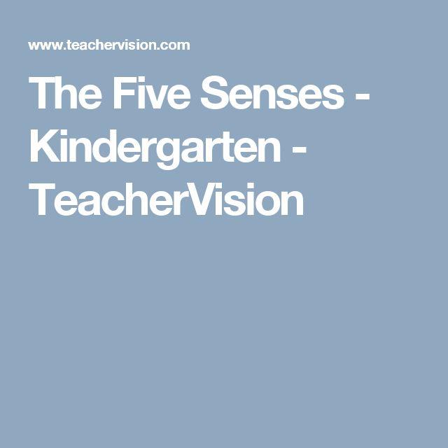 how to teach five senses in kindergarten
