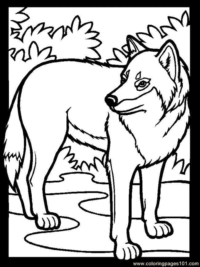 amazing wolf coloring page with germany coloring pages