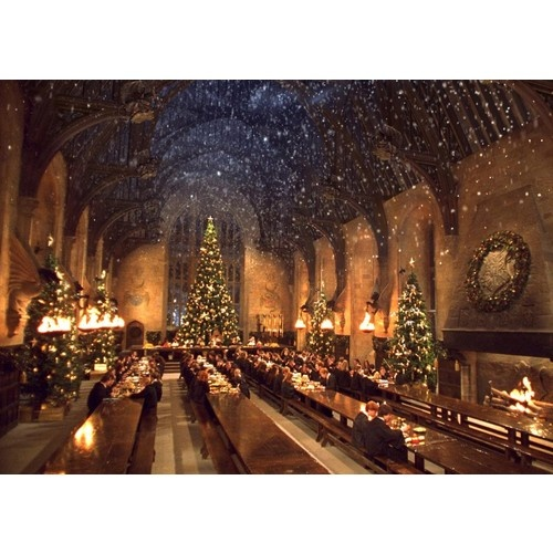 Harry Potter and The Chamber of Secrets - 2002 #2002 #harrypotter #film #christmas