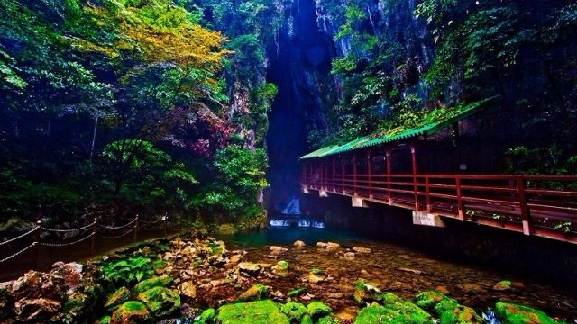 Akiyoshi Limestone Cave | JAPAN DISCOVERY