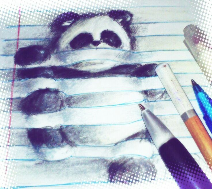 3d sketch of a panda entangled on my page lol