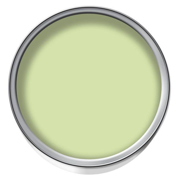 wilko colour matt emulsion paint lime sorbet at. Black Bedroom Furniture Sets. Home Design Ideas
