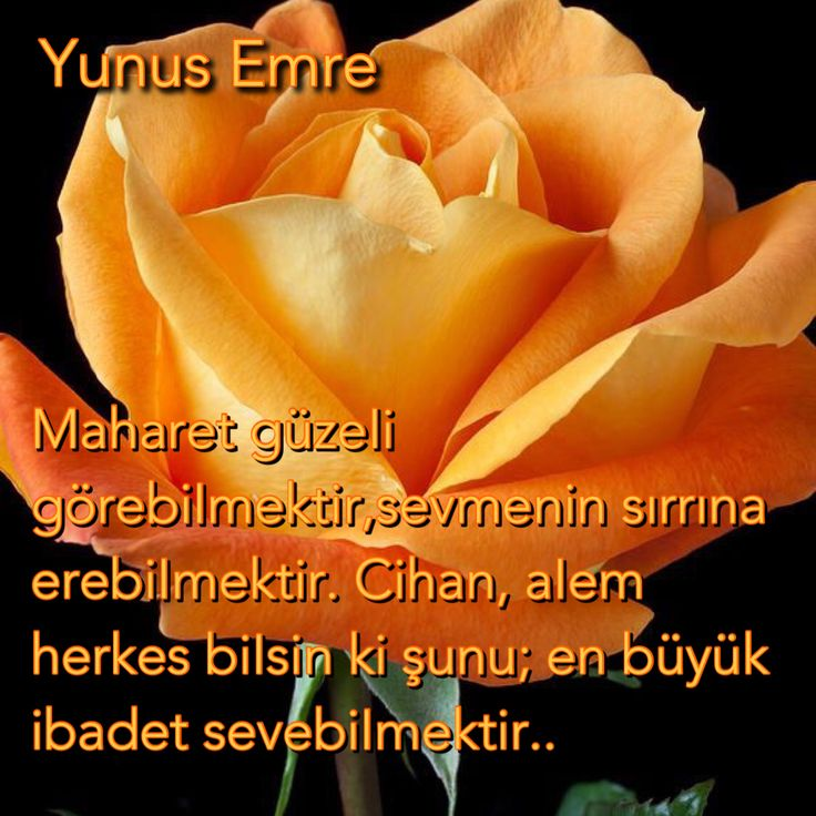#tasavvuf# Yunus Emre