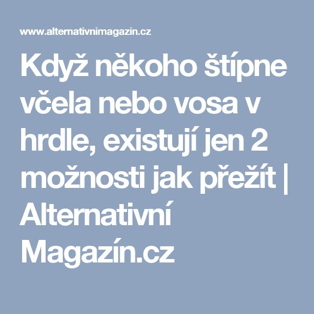Když někoho štípne včela nebo vosa v hrdle, existují jen 2 možnosti jak přežít | Alternativní Magazín.cz
