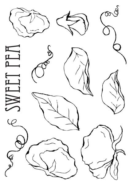 printable colouring pages - Chrysanthemum Book Coloring Pages