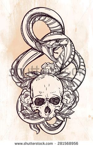 Hand-drawn vintage linear tattoo. Stylish symbol, highly detailed hand drawn snake serpent, wrapped around ornate floral human scull linear style. Engraved pirate dark romantic isolated vector art.