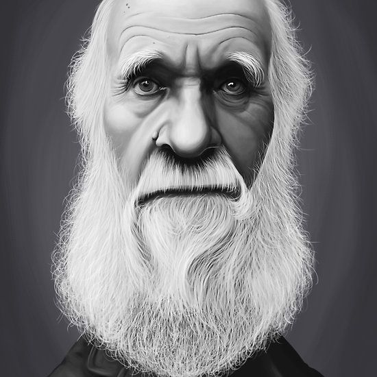 Charles Darwin art | decor | wall art | inspiration | caricature | home decor | idea | humor | gifts