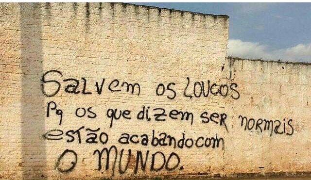 Salvem os loucos porque os que dizem ser normais estão acabando com o mundo. #frases #grafite