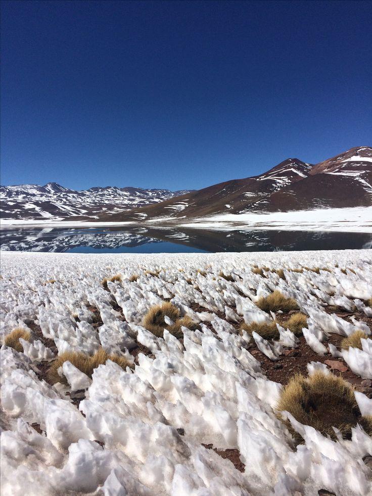 Laguna Miscanti - Chile