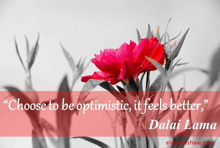 """Choose to be optimistic, it feels better,"" Dalai Lama Image Quote elainewshaw.com"