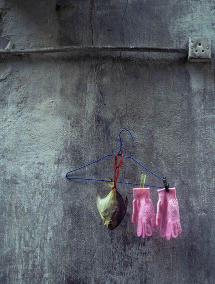 Objets oubliés, perdus, Hong Kong. Michael Wolf