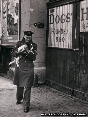 An RAF Serviceman delivers a dog to Battersea Dogs home, it had been found within the rubble of a bombed out street. WWII