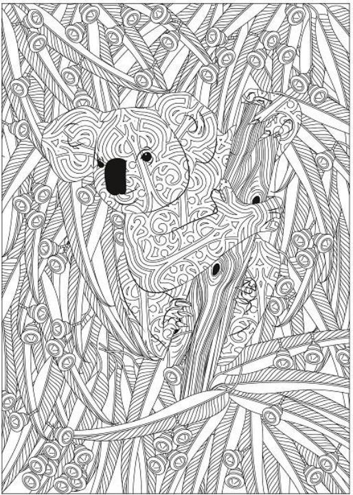 Hidden In The Jungle Coloring Book