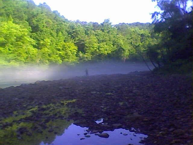 The sipsey fork of the black warrior river is a 71 mile for Trout fishing in alabama