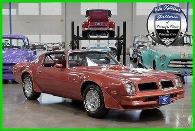 nice 1976 Pontiac Firebird Trans-Am - For Sale
