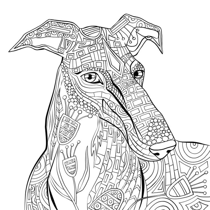 free adult coloring pages greyhound coloring pages adult coloring pages dog coloring pages