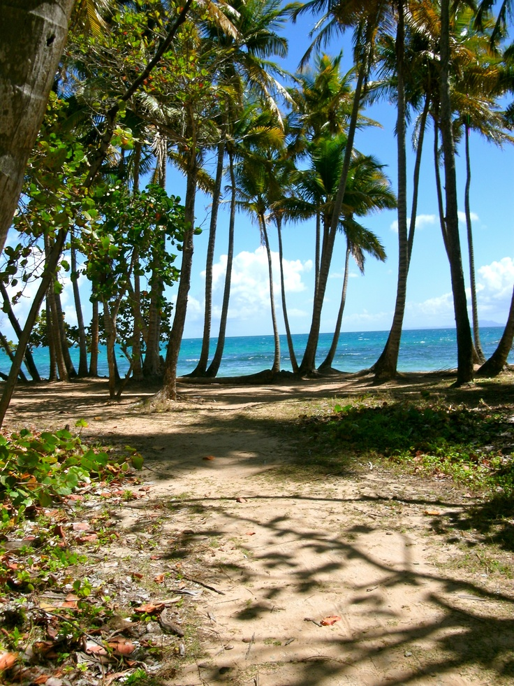 Beach In Humacao, Puerto Rico.. i am here right now ...