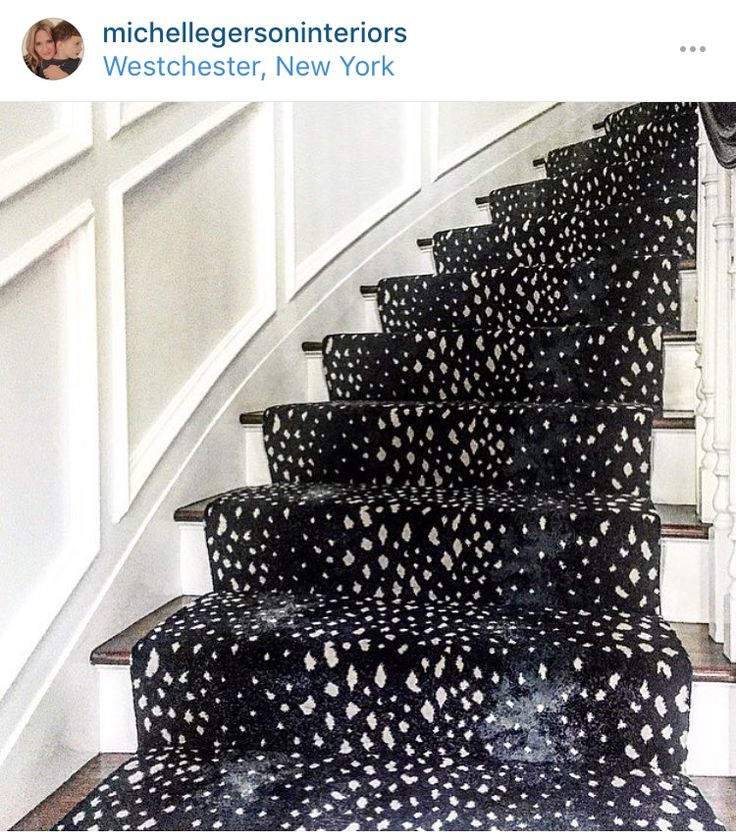 Animal Print Rug Runners For Stairs: 22 Best Animal Print Stair Runners Images On Pinterest