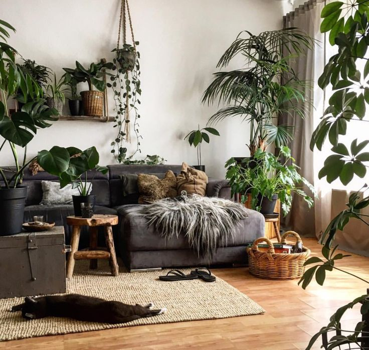 Beautiful And Plant Filled Home Living Room Plants Zen Living Rooms Interior Design Living Room