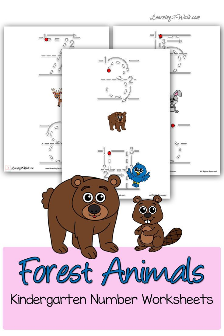 forest animals kindergarten number worksheets writing number worksheets and the o 39 jays. Black Bedroom Furniture Sets. Home Design Ideas