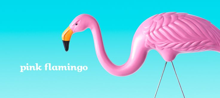 Pink Flamingo by DavidsTea
