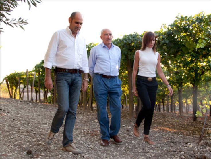 Ben 15 i vini dell'Azienda Agricola G. Milazzo potranno fregiarsi del prezioso contrassegno del Concours Mondial de Bruxelles. Resi noti, nei giorni scorsi, i risultati del Concorso Mondiale di Bru…