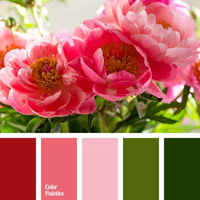 3465 best images about All Color Palette on Pinterest