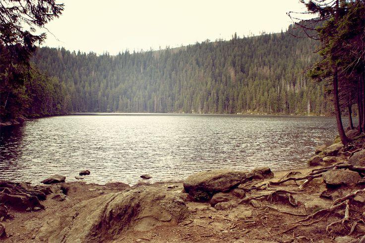 Čertovo jezero - Šumava - Böhmerwald - Czech republic