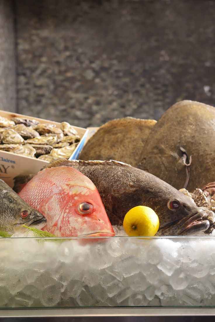Fresh seafood ingredients to create your Mediterranean dishes that will satisfy your appetite. #Mediterranean #Food #Seafood #Ingredients #Flavors #International #Buffet #Lunch #Dinner #Promotion #August #Renaissance #Bangkok #Ratchaprasong #Hotel#fishes#oysters#shell