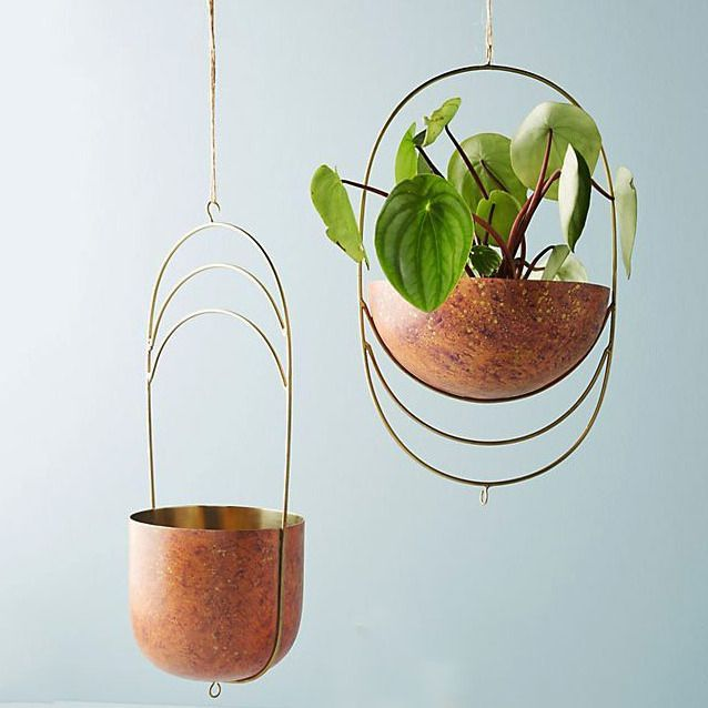 What Are The Best Ways To Hang Plants And What Plants Should You Hang Hangingplantsindoor Including Hanging Hanging Plants Hanging Pots Hanging Plants Diy