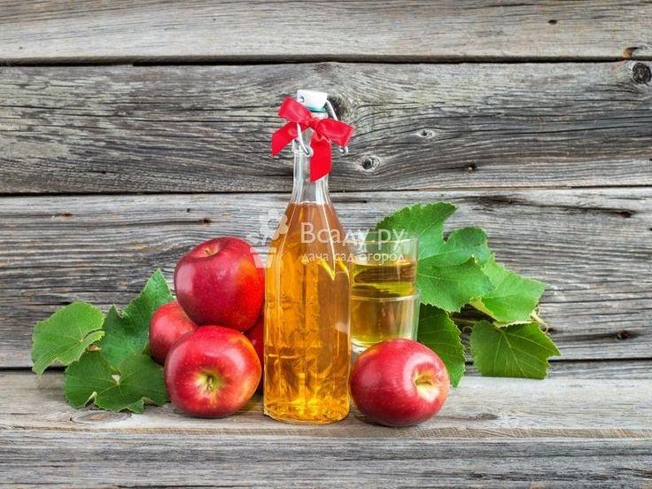 Домашний сидр из яблок или яблочного сока можно приготовить в любое время года, вкусный и бодрящий напиток повысит настроение и подарит ощущение праздника