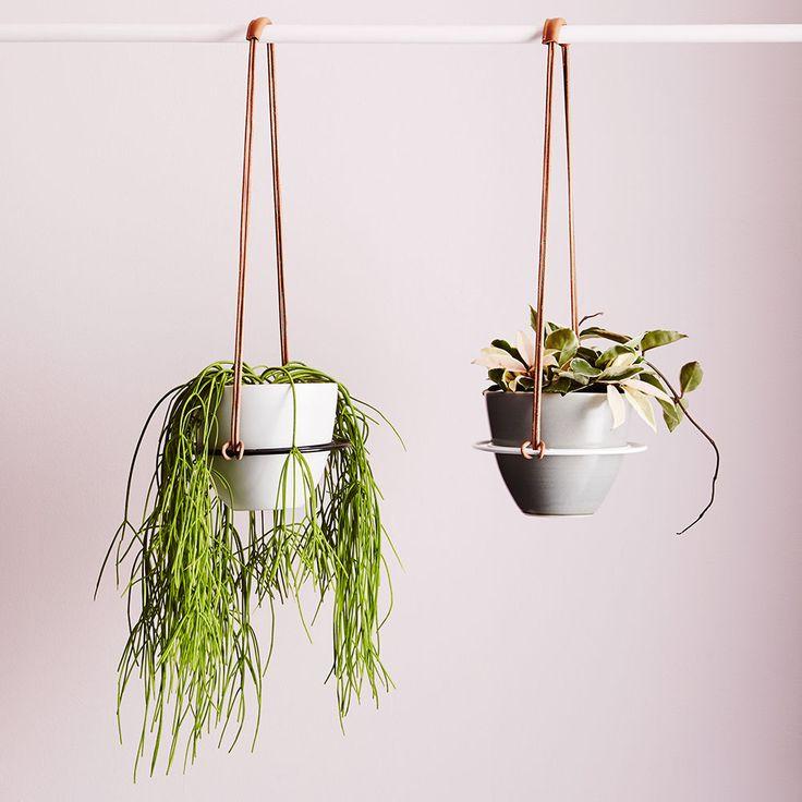 top3 by design - Ivy Muse - saturn pot hanger black - Australian Design