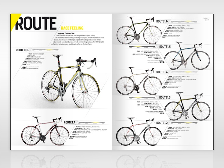 Diagonal Layout Editorial Pinterest Layouts