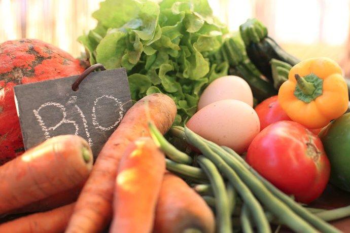 Het artikel gaat over het feit dat biologisch voedsel niet altijd gezonder is dan plantaardig voedsel. Er is namelijk niet genoeg wetenschappelijk bewijs dat biologisch voedsel beter is. Voor plantaardig voedsel is er dat wel. Het is niet de bedoeling dat je nu stopt met biologisch voedsel aan te kopen, dat is niet de boodschap. De boodschap is hier dat je meer campagnes zou moeten voeren voor meer plantaardig voedsel. Dit verminderd de kans op diabetes, kanker en hart- en vaatziekten.