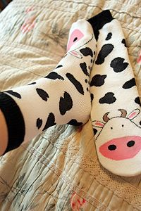 Cow socks to keep you warm - here's looking at you!