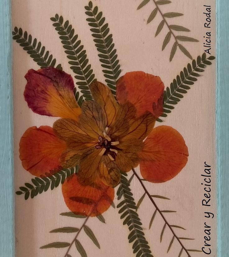 Reflejo de la naturaleza.   Una obra de arte reciclada. http://crearyreciclar.com/?p=2409  Madera de un guacal, flores secas, cartones y listo!!!