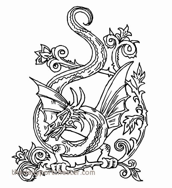 Pin Di Best Coloring Pages