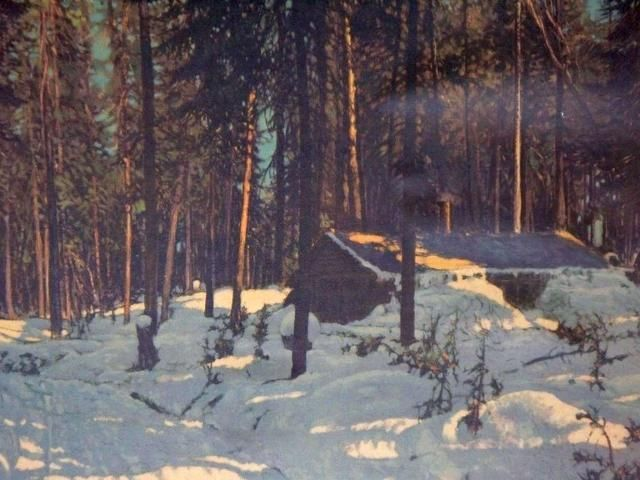 Shack In The Woods Painting By Franz Johnston