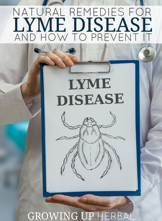 Natural Remedies For Lyme Disease and How To Prevent It   Growing Up Herbal   Concerned about ticks and Lyme disease? Here are some natural remedies and prevention tips to keep your little ones safe this summer.