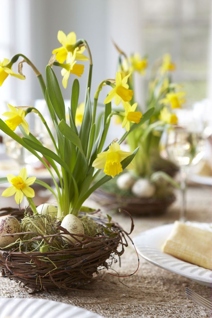 A spring arrangement of daffodils & speckled eggs in bird nests.